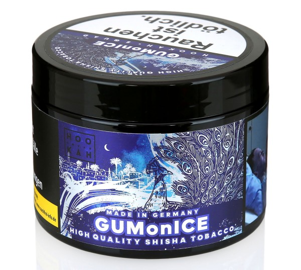 Hookah Squad - GUM on ICE 200g